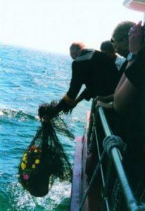 eine Urne und Blumen werden über eine Schiffsreling ins Meer gelassen, Foto: Reederei Horst Hahn